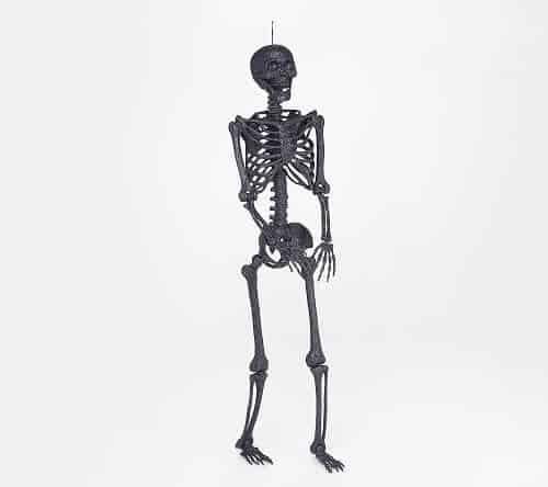Martha Stewart 5' Glittered Indoor-Outdoor Posable Skeleton